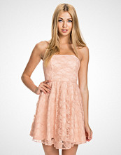 John Zack Mørk rosa Lace Bandeau Dress