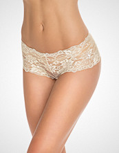 Hot Anatomy Lace Hipster