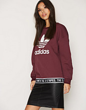Adidas Originals Trf Sweatshirt