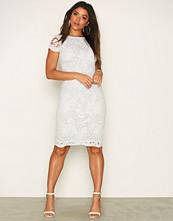 Ax Paris Short Sleeve Midi Lace Dress