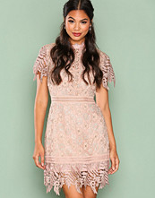 True Decadence Gold Short Sleeve Lace Dreamy Dress
