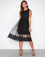 Dry Lake Black Lace Cindy Dress