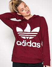 Adidas Originals Burgundy Trefoil Hoodie