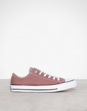 Converse Taupe Chuck Taylor All Star Ox