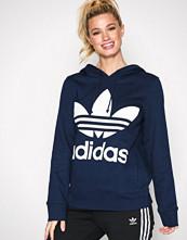 Adidas Originals Navy Trefoil Hoodie
