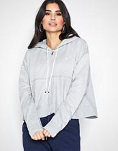 Polo Ralph Lauren Grey Zip Hood