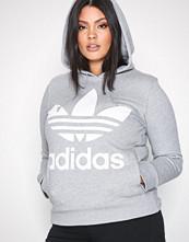 Adidas Originals Grå Trefoil Hoodie