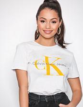 Calvin Klein Grey Tanya-44 Cn Tee S/S