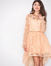 True Decadence Peach Lace Skater Dress
