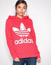 Adidas Originals Korall Trefoil Hoodie