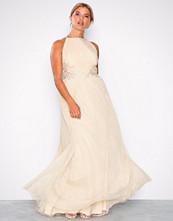 Little Mistress Beige Mesh Lace Trim Dress