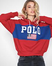 Polo Ralph Lauren Rlxd Flag Hd-Long Sleeve-Knit