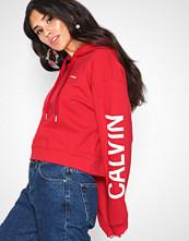 Calvin Klein Cropped Institutional Hoodie