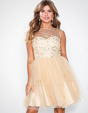 NLY Eve Floral Tulle Dream Dress