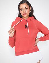 Polo Ralph Lauren Shrnkn Po Hd-Classic-Long Sleeve-Knit