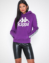 Kappa Sweat hood, Auth. Hurtado