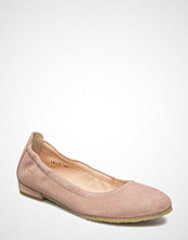 Angulus ***Ballerina***