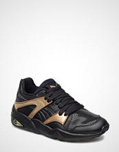Puma Blaze Gold Wn'S