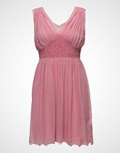 Intropia Dress