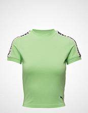 Fenty PUMA by Rihanna Ss Cropped Tee T-shirts & Tops Short-sleeved Grønn FENTY PUMA BY RIHANNA