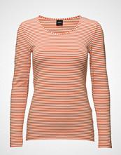 Nanso Ladies Shirt, Liitu