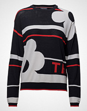Tommy Hilfiger Tierra Graphic C-Nk Swtr