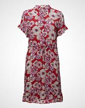 Signal Dress
