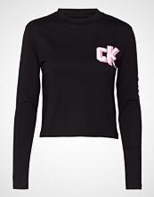 Calvin Klein Sleeve Logo Ls Cropped Tee