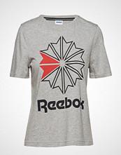 Reebok Classics Ac Gr Tee