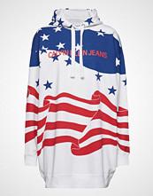 Calvin Klein Flag Hoodie Dress