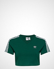 Adidas Originals Cropped Tee