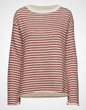 Morris Lady Allaire Sweatshirt Strikket Genser Rosa MORRIS LADY