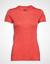 Icebreaker Wmns Amplify Ss Low Crewe T-shirts & Tops Short-sleeved Rød ICEBREAKER