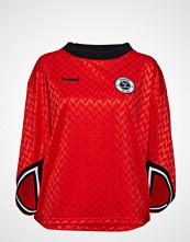 Hummel Hive Hmlannabel Sweatshirt T-shirts & Tops Long-sleeved Rød HUMMEL HIVE