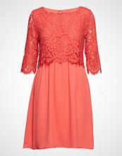 Saint Tropez Party Dress W Lace Kort Kjole Rosa SAINT TROPEZ