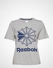 Reebok Classics Ac Gr Tee T-shirts & Tops Short-sleeved Grå REEBOK CLASSICS