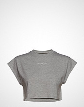 Ivyrevel Cropped T-Shirt T-shirts & Tops Short-sleeved Grå IVYREVEL