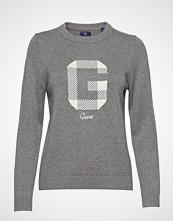 Gant O2. G Logo Crew Strikket Genser Grå GANT