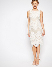 Coast Moiselle Lace Pencil Dress