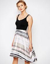 Coast Riley Stripe Skirt Dress