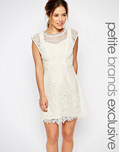 Little Mistress Petite All Over Lace Skater Mini Dress With Frill Sleeve Detail