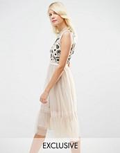 Needle & Thread Tulle Woodland Embellished Midi Dress