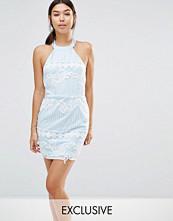 Boohoo Exclusive Organza Embroidered Bodycon Dress