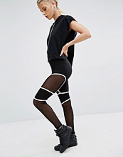 Boohoo Sheer Panel Leggings