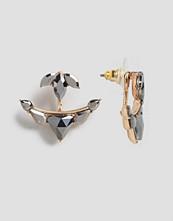 ALDO Mcclouchan Through & Through Earrings