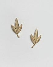 ASOS Leaf Stud Earrings