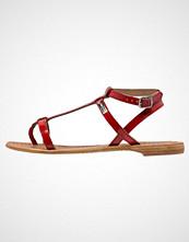 Les Tropéziennes par M Belarbi HILAN Flip Flops rouge