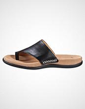 Gabor Flip Flops schwarz
