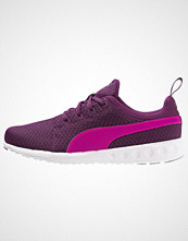 Puma CARSON Nøytrale løpesko magenta purple/pink glow