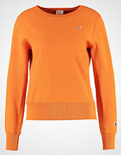 Champion Reverse Weave Genser orange